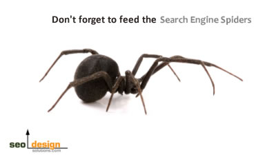 SEO Basics: How to Bait Search Engine Spiders