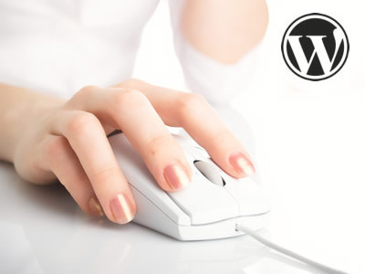 how to add a link in a blog on wordpress