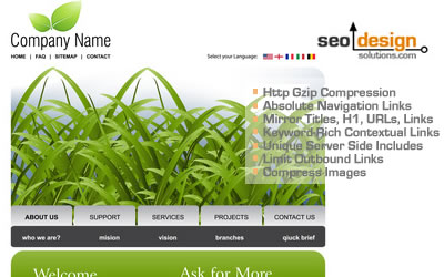 Template Optimization Tips by SEO Design Solutions