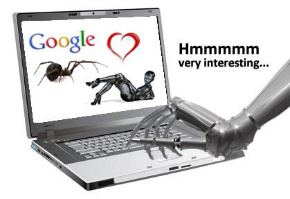 Google Loves Authority Sites